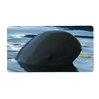 Irrawaddy Dolphin Peek-A-Boo Shipping Label