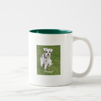 Irresistible Coffee Mugs