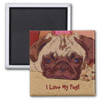 Irresistible Pug Puppy Dog Magnet
