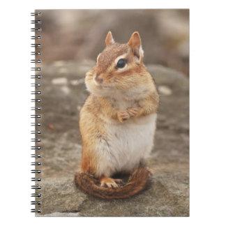 Irresistibly Cute Fat & Fluffy Chipmunk Notebook