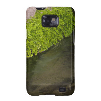 irrigation canal samsung galaxy s2 cases