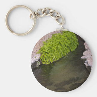 irrigation canal key chain