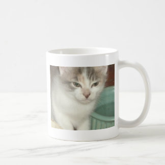 Irritated Kitten Coffee Mug