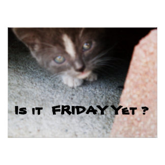 IS IT FRIDAY YET, KITTY poster