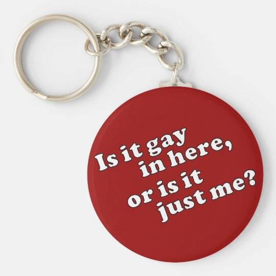 Is it gay in here, or is it just me? keychain