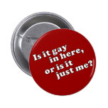 Is it gay in here, or is it just me? pin
