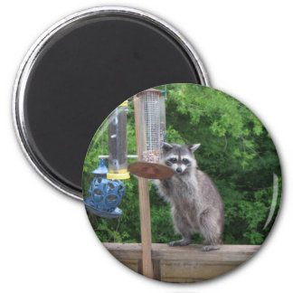 is it lunchtime yet? 2 inch round magnet