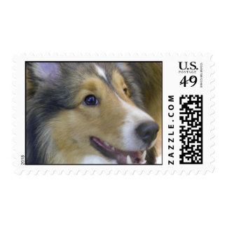 Is It My Turn Postage Stamps