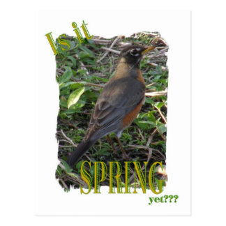 Is It Spring Yet??? Postcard