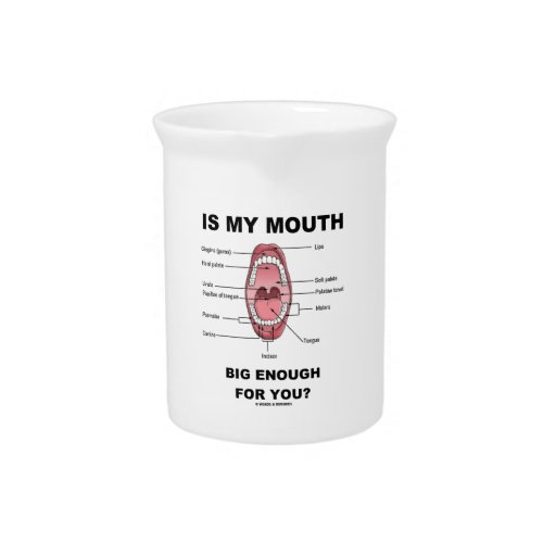 Is My Mouth Big Enough For You? (Anatomical Humor) Pitchers