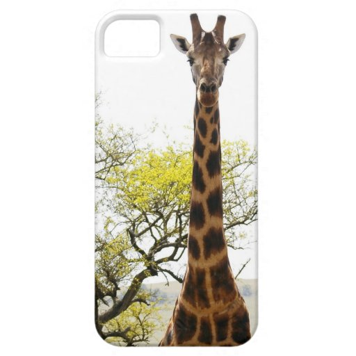Is that a Giraffe in your pocket, or... for iPhone iPhone 5 Case