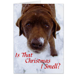 Is that Christmas I smell? Card