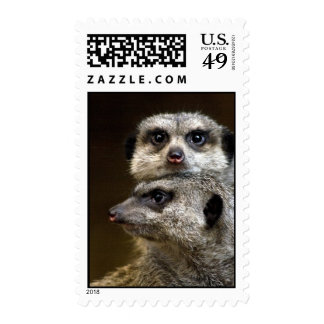 Is That... Postage Stamp