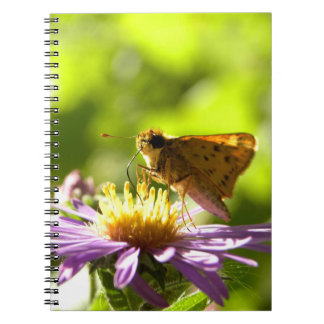 """""""Is This Spring?"""" Notebook"""