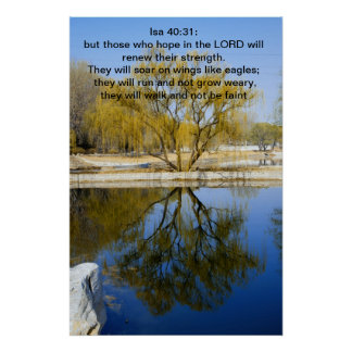 Isa 40:31: but those who hope in the LORD Poster