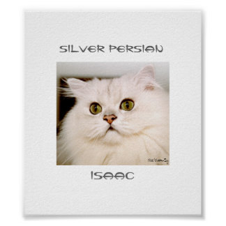 Isaac, An Extraordinary Silver Persian Print
