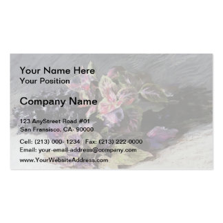 Isaac Levitan- Coleus Double-Sided Standard Business Cards (Pack Of 100)
