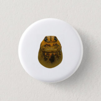 Isabel Bug Pinback Button