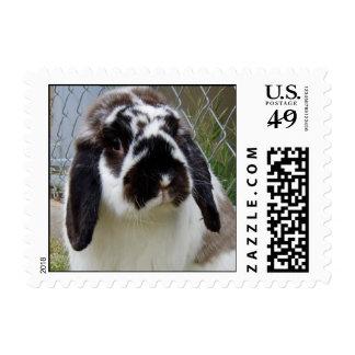 Isabelle Postage Stamp