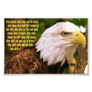 Isaiah 40 30-31 with Bald Eagle Photograph