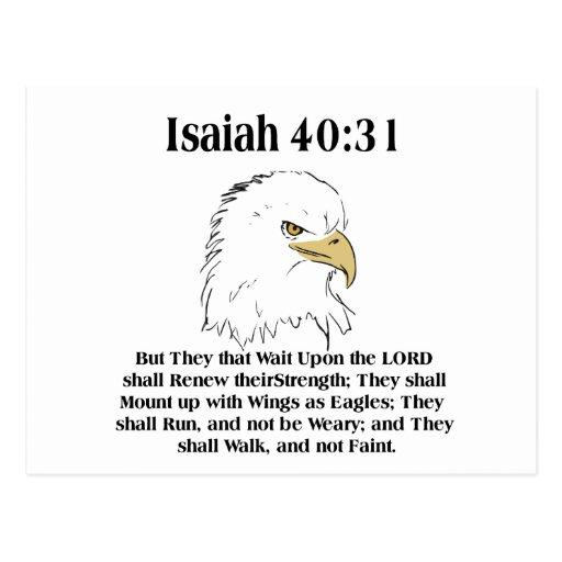 Isaiah 40:31 Card Postcard