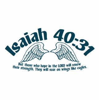 Isaiah 40:31 cutout