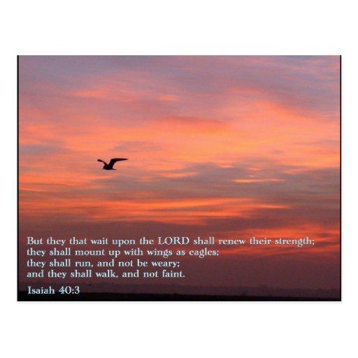 Isaiah 40:3 Sunrise Postcard