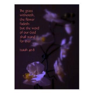 Isaiah 40:8 postcard