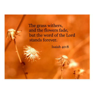 Isaiah 40:8 The grass withers and the flowers fade Postcard