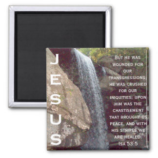 Isaiah 53 Collection 2 Inch Square Magnet
