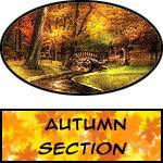 Autumn - Prints, Posters