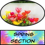 Spring - Prints, Posters