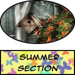 Summer - Prints, Posters
