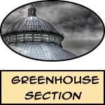 Greenhouse - Prints, Posters