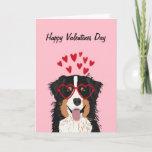 Australian Shepherd - tri colored valentines love Card