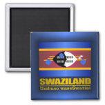 Swaziland Pride Magnet