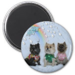 Cairn Terriers in the rain magnet