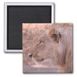 Satara India Lion Travel Souvenir Fridge Magnets