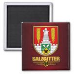 Salzgitter Magnet