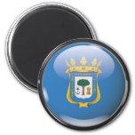 Flag and shield of Huelva Magnet