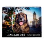 Australian Leonbergers Calendar