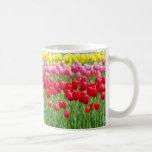 Festival Of Tulips Coffee Mug