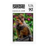 Hugging Monkeys Postage