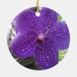 Vanda Orchid Circle Ornament
