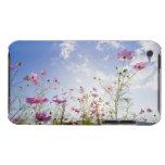 Cosmos flowers. Otsu, Shiga Prefecture, Japan 2 iPod Touch Case-Mate Case