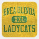Brea Olinda Ladycats Athletics Square Sticker