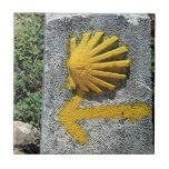 El Camino de Santiago de Compostela, Spain, shell Ceramic Tile