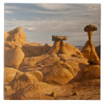 View of eroded rock toadstools tile