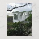 Iguazu Falls Argentina Postcard