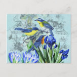 Vintage Floral Songbirds Apparel and Gifts Postcard
